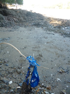 Balloon on beach at Waiheke Island