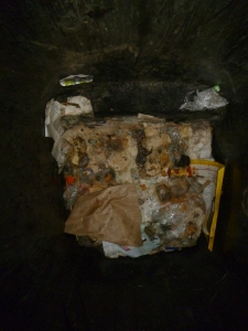 Bottom layer of a contaminated recycling bin.